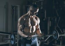 Zeer bodybuilder van de machts de atletische kerel Royalty-vrije Stock Fotografie