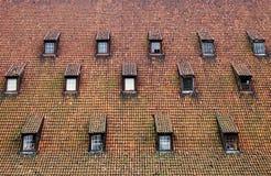 Zeer buitengewoon dak Stock Fotografie