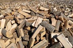 Zeer groot gebied van hardhoutspleet en het uitgespreide uit leggen in de te drogen zon stock afbeelding