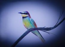 Zeer heldere vogel op een tak royalty-vrije illustratie