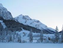 Zeer koude de winterdag royalty-vrije stock afbeeldingen