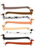 Zeer lange kleurrijke Tekkelreeks Royalty-vrije Stock Fotografie