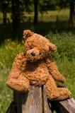 Zeer leuke teddybear zitting op de omheining royalty-vrije stock afbeelding