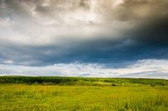 Zeer mooi de zomerlandschap Boom op een gebied met donkere wolk Royalty-vrije Stock Foto