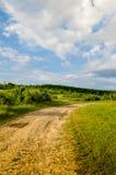 Zeer mooi de zomerlandschap Boom op een gebied met donkere wolk Stock Afbeeldingen