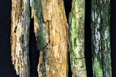 Zeer Oud en Rusty Wood Branches op Zwarte Oppervlakte Als achtergrond Hoofdnadruk op Grootste Tak, Andere Vage Takken - royalty-vrije stock foto