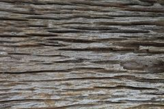 Zeer oud stuk van het verouderen van hout met diepe natuurlijke barsttextuur royalty-vrije stock fotografie