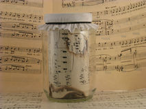 Zeer oude muziek Royalty-vrije Stock Foto