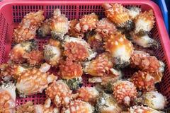 Zeescheden voor verkoop bij een markt stock afbeeldingen