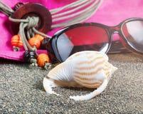Zeeschelp met andere strandtoebehoren op achtergrond Royalty-vrije Stock Foto's