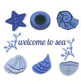 Zeeschelpen in blauw met tekst als achtergrond Stock Fotografie