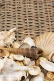 Zeeschelpen n de lagere kant van rijs baket verticaal Stock Fotografie