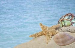 Zeeschelpen op zand met glasbal met blauw water Stock Afbeeldingen