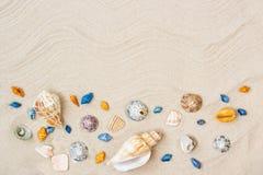 Zeeschelpen op zand Van de overzeese de achtergrond de zomervakantie met ruimte voor de tekst royalty-vrije stock fotografie