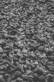 Zeeschelpenachtergrond in zwart-wit Sluit omhoog mening van vele die zeeschelpen bij het strand worden opgestapeld Stock Foto's