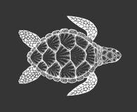 Zeeschildpad in de stijl van de lijnkunst Hand getrokken vectorillustratie Reeks oceaanelementen Stock Afbeeldingen