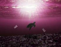 Zeeschildpad die in de oceaan met rond afval zwemmen allen royalty-vrije stock fotografie