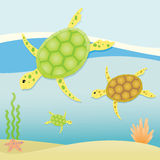 Zeeschildpadden Royalty-vrije Stock Afbeeldingen
