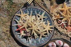 Zeester - Behramkale, Assos, Egeïsche dorpen stock afbeelding