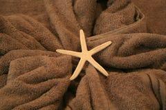 zeester die op een handdoek liggen Stock Afbeeldingen