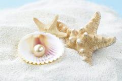 Zeester en shells met parels op het zand Stock Afbeelding