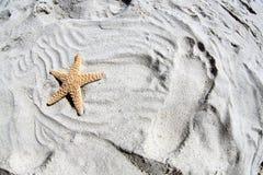 Zeester en voetafdruk in zand Royalty-vrije Stock Afbeelding