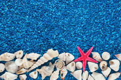 Zeester en zeeschelpen op zand stock foto
