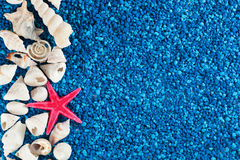 Zeester en zeeschelpen op zand stock fotografie
