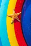 Zeester op een kleurrijke achtergrond Royalty-vrije Stock Afbeelding