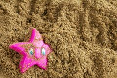 Zeester op een strandstuk speelgoed Royalty-vrije Stock Afbeelding