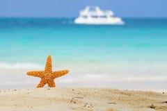 Zeester op strand, blauwe overzees en witte boot Stock Afbeeldingen