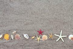 Zeesterren op strandzand Royalty-vrije Stock Foto's