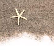 Zeesterren op strandzand Stock Fotografie
