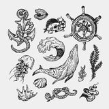 Zeevaartinzameling Stock Fotografie
