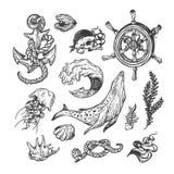 Zeevaartinzameling reeks Royalty-vrije Stock Foto