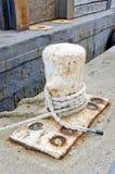 Zeevaartmeertros Royalty-vrije Stock Fotografie