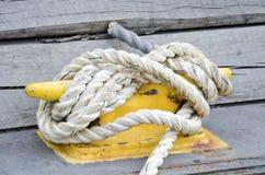 Zeevaartmeertros Royalty-vrije Stock Foto
