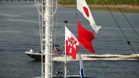 Zeevlaggen stock video