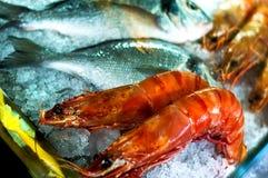 Zeevruchten en crevettes Stock Fotografie