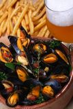 Zeevruchten, mosselen, bier, gebraden gerechten stock fotografie