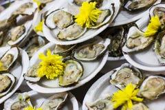Zeevruchten, oester (schaaldieren) Stock Afbeelding