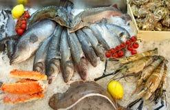 Zeevruchten op Ijs Stock Foto's
