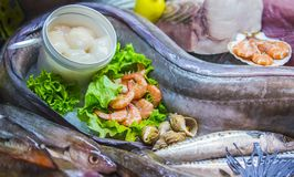 Zeevruchten op ijs bij de vissenmarkt, mariene vissen, garnalen, slakkehuis, kammosselen royalty-vrije stock afbeelding