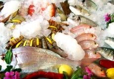Zeevruchten in restaurant over ijs stock foto's