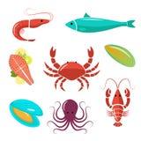 Zeevruchten vlakke uitrusting Vissen, garnalen, krab, mosselen, oester Stock Foto's