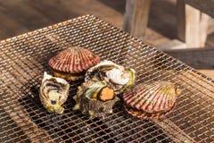 Zeevruchtenbarbecue - Oester en kammosselgrill Stock Foto's
