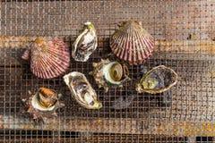 Zeevruchtenbarbecue - Oester en kammosselgrill Stock Afbeelding