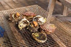 Zeevruchtenbarbecue - Oester en kammosselgrill Stock Afbeeldingen