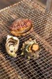 Zeevruchtenbarbecue - Oester en kammosselgrill Royalty-vrije Stock Afbeelding