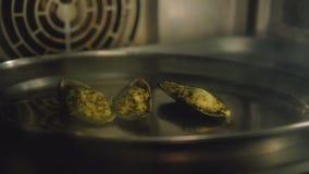 Zeevruchtenmaaltijd het koken de ovenbaksel van receptentweekleppige schelpdieren stock videobeelden